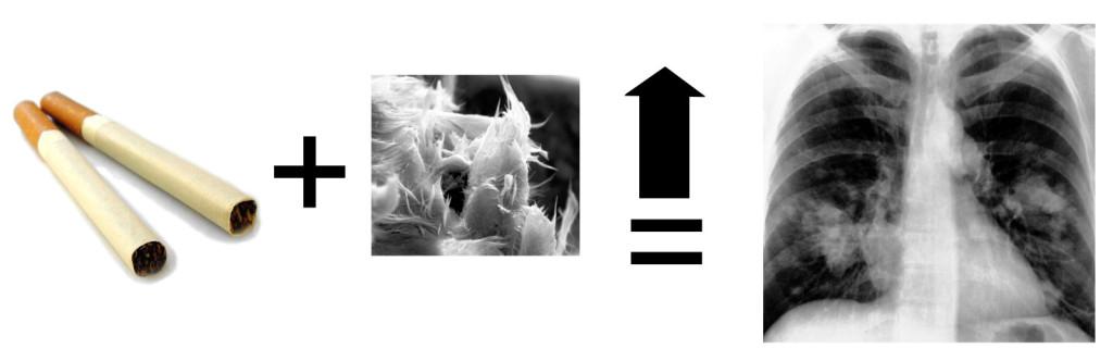 Asbestlungenkrebes verursacht durch Rauchen und Asbest